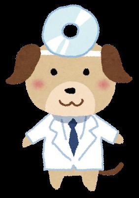 獣医師さん